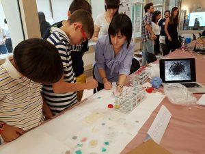 ricercatori laboratorio tissutale (4)